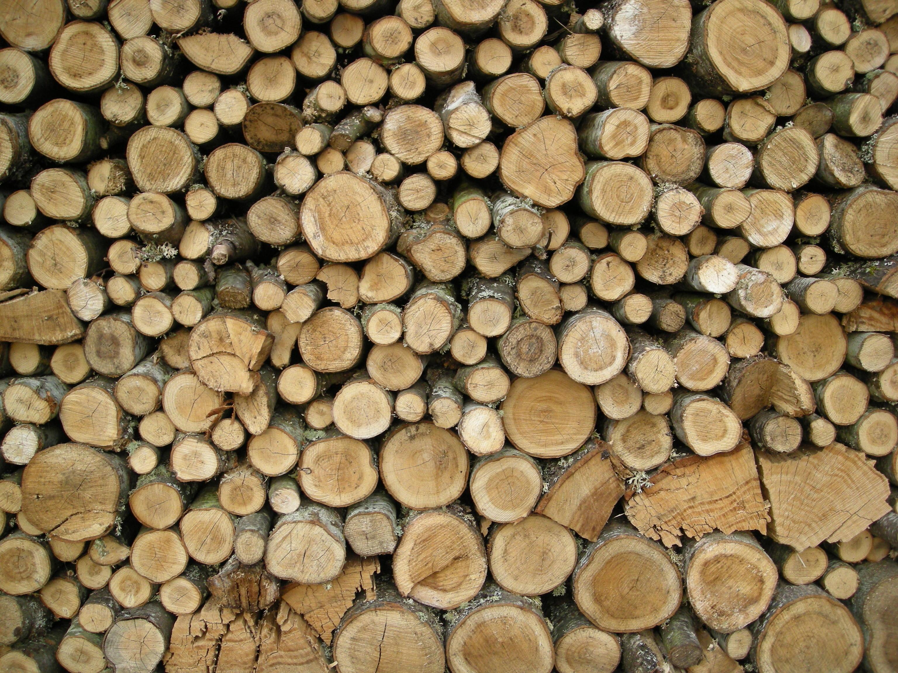 Ülikoolid hakkavad nõustama uudse puidurafineerimistehase teadusuuringuid